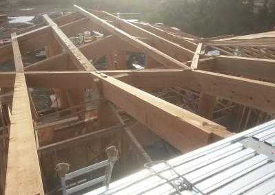 Hitacu Community Centre_Roof