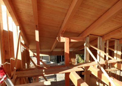 Off Grid Forest Home_Beams and Roof