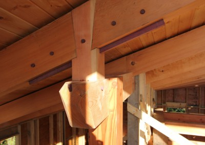 Off Grid Forest Home_Purple Heart Framing Detail