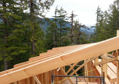 Off Grid Forest Home_Roof Beams 2