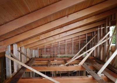 Off Grid Forest Home_Roof Beams