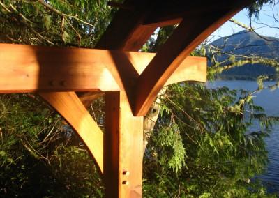 Tofino Botanical Gardens_Frame Curves
